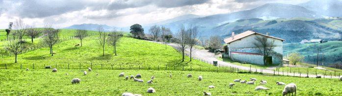 El Camino de Le Puy