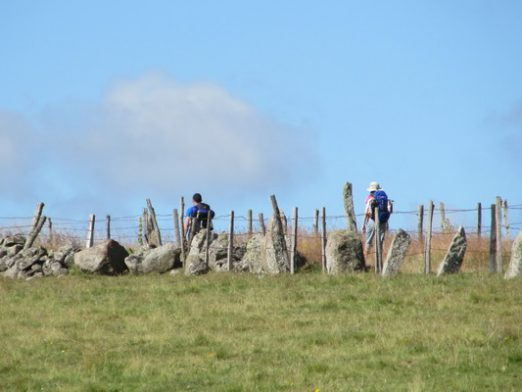 The Way / todocaminosantiago